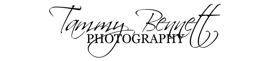 Tammy Bennett Photography