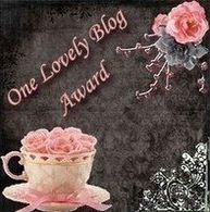 Oceneni meho blogu