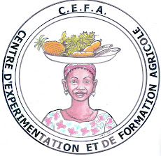 CEFA-Central African Republic