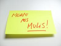 Movimento MORTE AOS MULIS, liderado por Beto Ribeiro, autor de Poder S/A - Histórias Possíveis do Mundo Corporativo