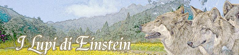 I Lupi di Einstein