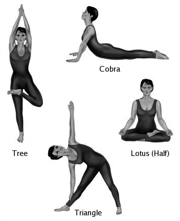Basic yoga postures and their variations