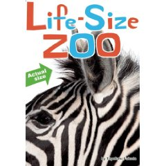 Life Size+Zoo Give Thanks for NONFICTION MONDAY in Practically Paradise