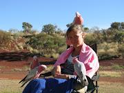 Patrice voert de papegaaien