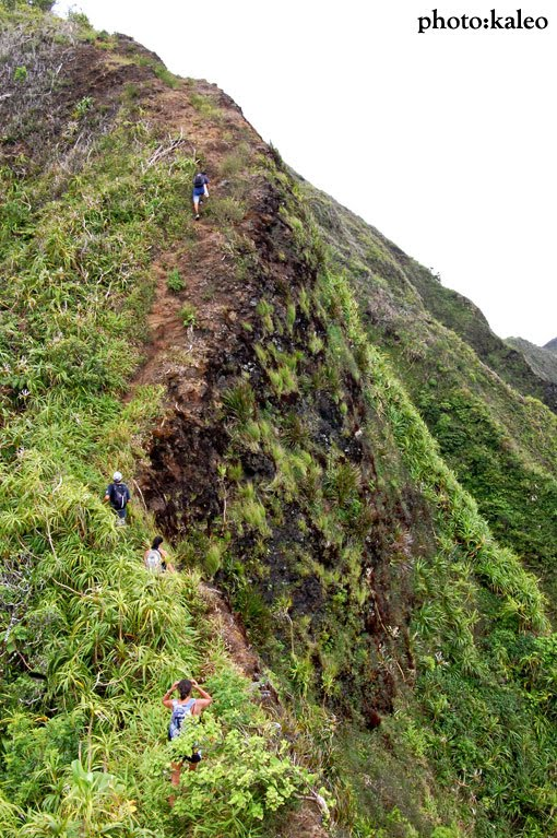 island trails mariners ridge kaluanui ridge to hawaii. Black Bedroom Furniture Sets. Home Design Ideas