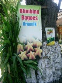 Belimbing Organik