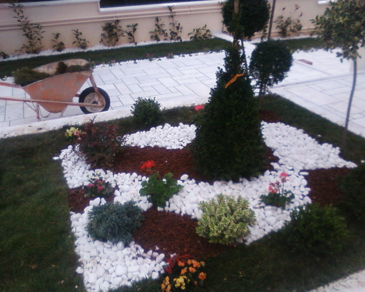 ο κηπος της Βικυς