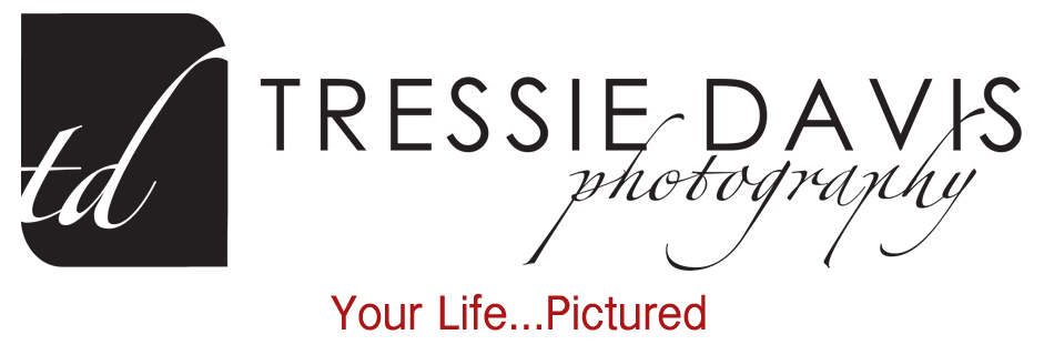 News From Tressie Davis Photography