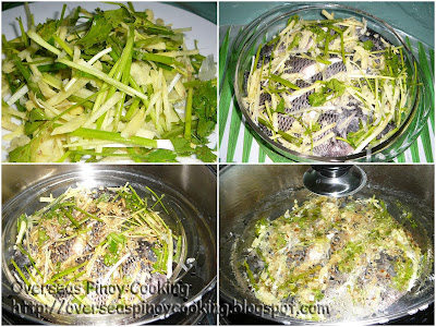 Steamed Fish - Steaming Procedure