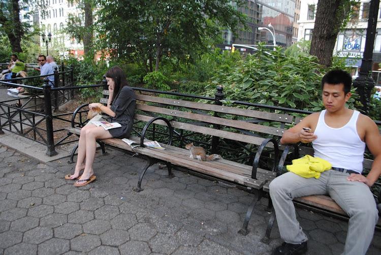pausa pranzo per tutti: UNION SQUARE, NYC