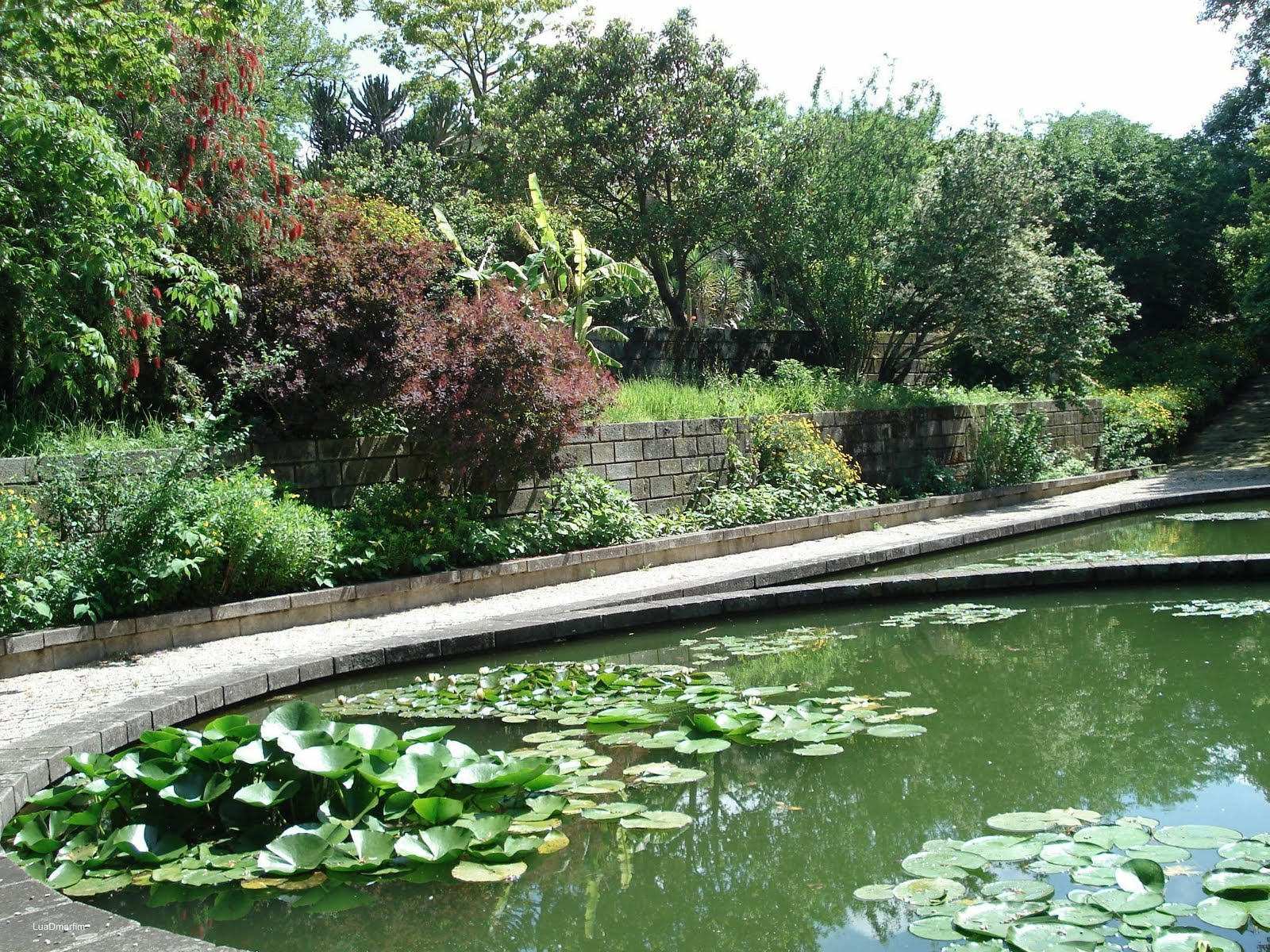 luaDmarfim Jardim Botânico Porto  caminhos e recantos I