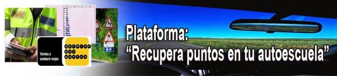 Plataforma Recuperapuntosentuautoescuela