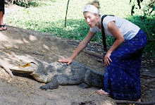 sometimes i pet crocodiles.