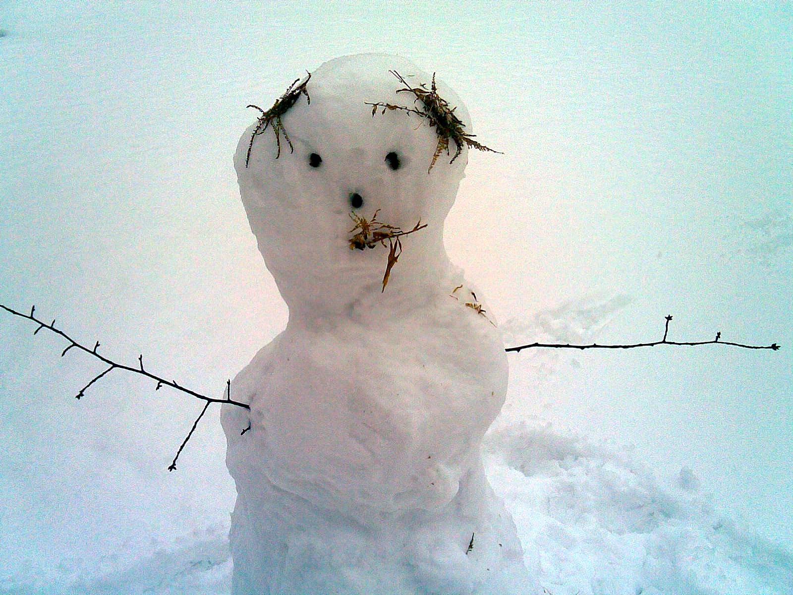 http://2.bp.blogspot.com/_KDvzKXcML4E/TSJnVFmlbtI/AAAAAAAAEGM/M38MYZaeiYU/s1600/snowman.jpg