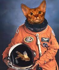 Space LOLCat