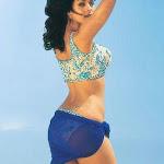 Hot Mallika Sherawat Sexy Pics