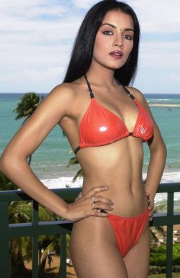 celina jaitley bikini Bikini Photo Shoot of Bollywood Babes
