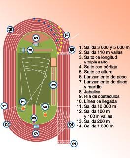 110 metro con vallas: