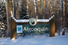 Gate to Algonquin Park In Winter