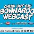 Bonnaroo をWebcastで観る