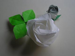白薔薇と蕾