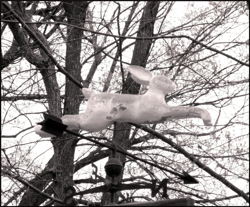 flying rabbit weather vane photo image