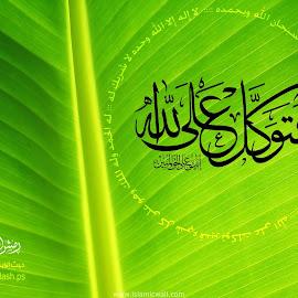 Gambar-Gambar Islami @ fotogambar.info