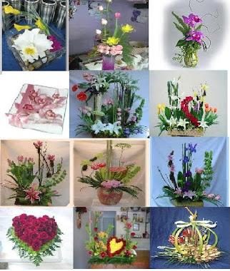 orquideas... undetalle unico........