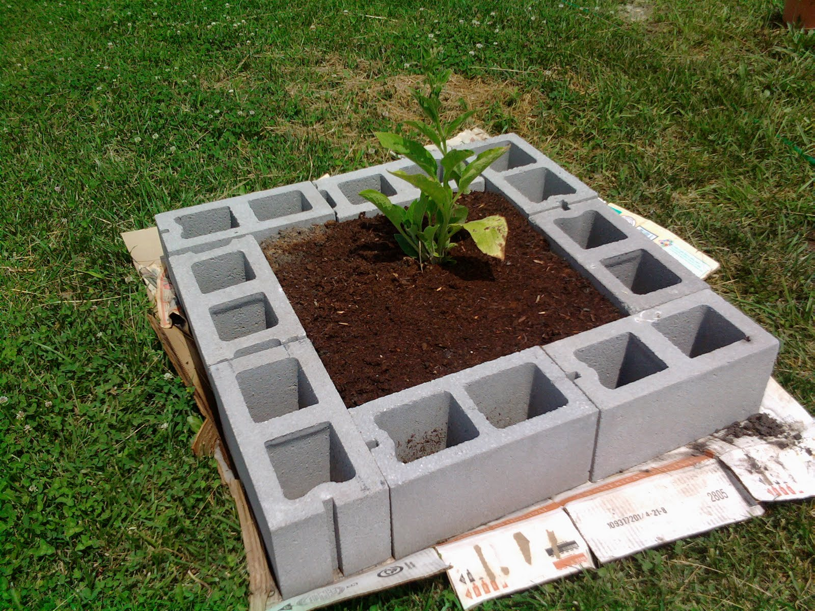 Beppycat Co Cinder Block Raised Bed