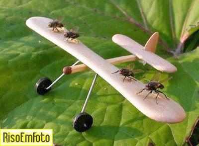 Avião aeromodelo feito com madeira e moscas.