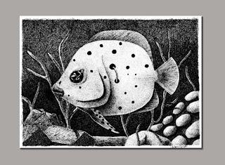 bico de pena - nanquim sobre papel - séria peixes