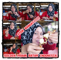 SEAFOOD PARADISE GOLDEN PRAWN BATAM INDONESIA