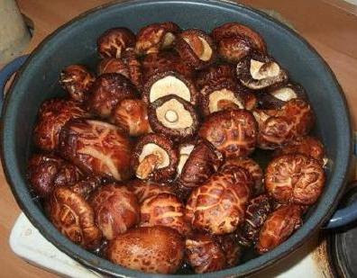 Simmering dried shiitake mushrooms