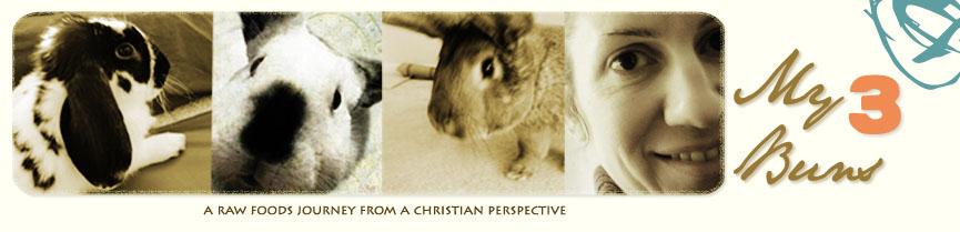 My Three Buns: Exploring God's Food