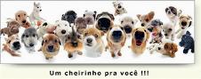 Não, a testes de cosméticos em animais !!!!
