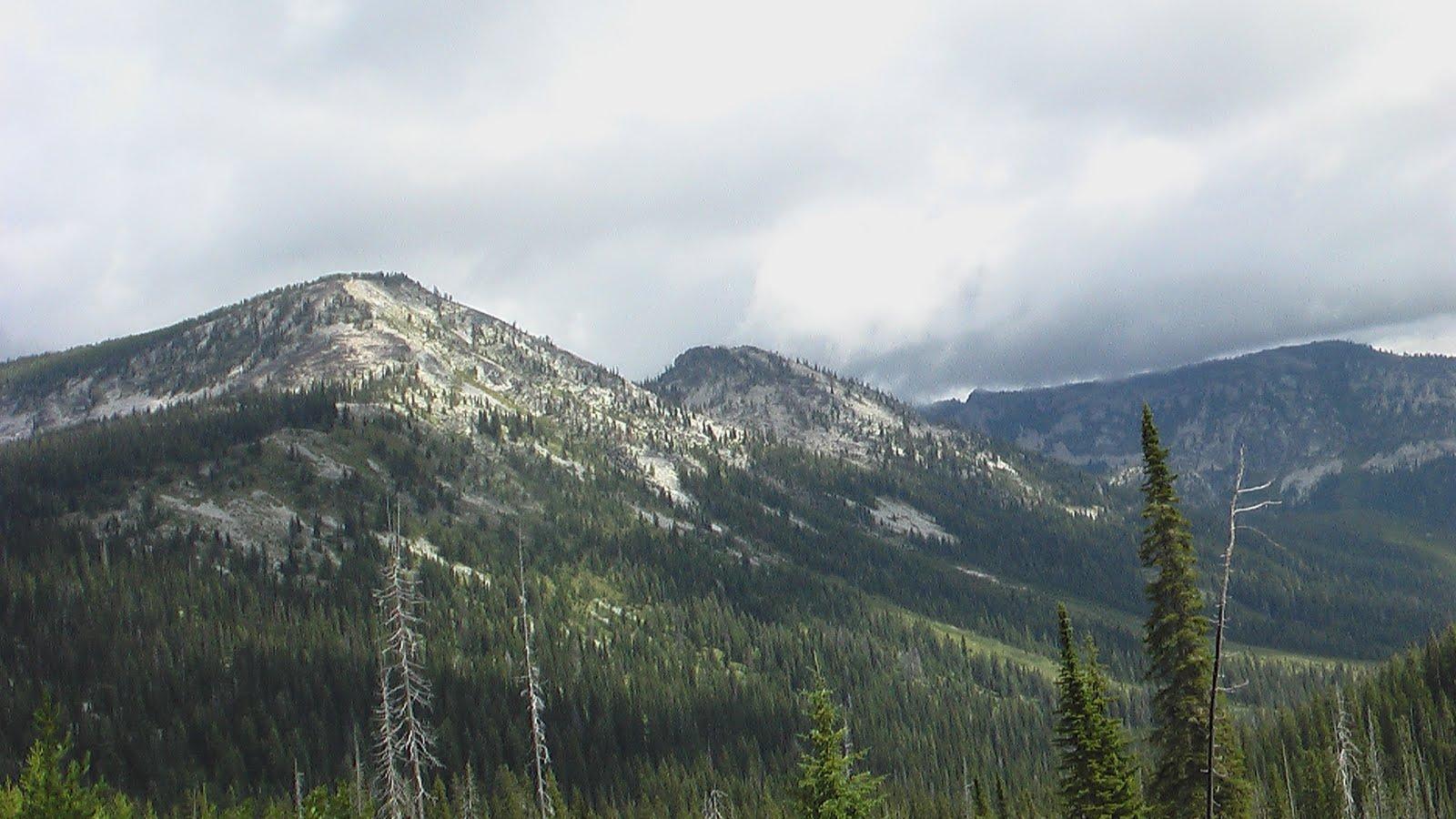Slogging Toward Liberty: Montana Legislative Session in Helena, MT