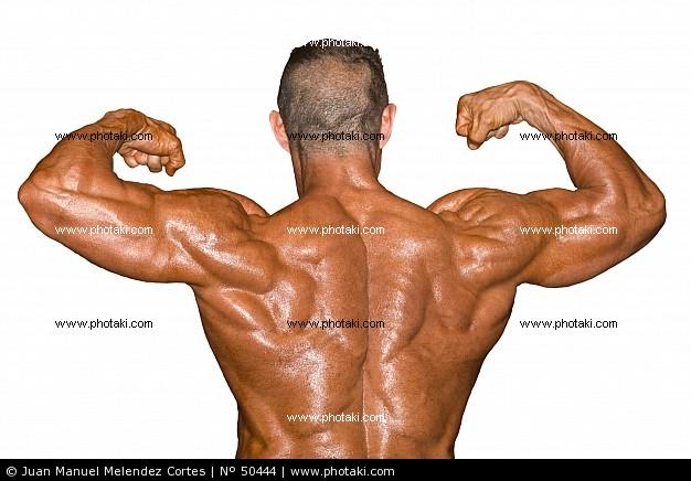 fisicoculturismo musculacion: