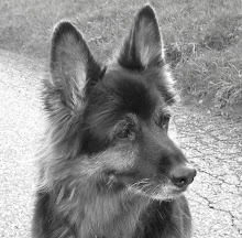 Mein Mdchen 21.09.1995 - 28.07.2011