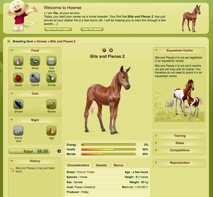 online games pferde
