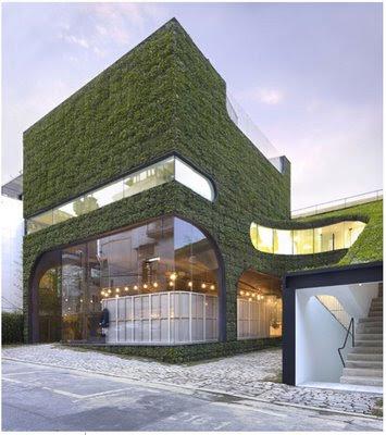 techos y muros de monterrey: