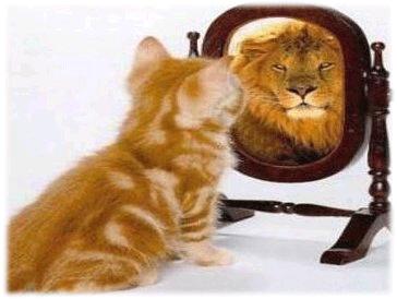 Fotografía de gato que se mira al espejo y se ve como un león
