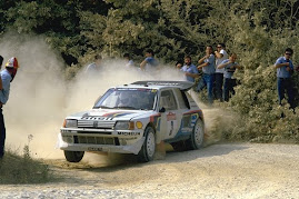 Rally Grupo B Peugeot 205 t16 evolution 2