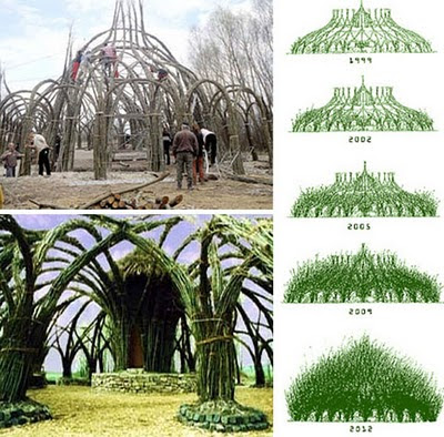 Stone Art Blog Living Willow Structures