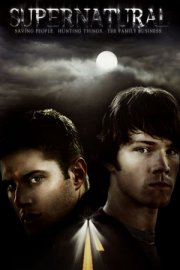 Supernatural 7×18 S07E18 The Born-Again Identity español online