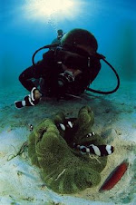 BENZ Scuba Diving