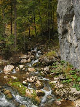 cascada in munti