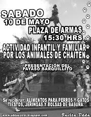 Punta Arenas Ayuda a los ANIMALES DE CHAITEN
