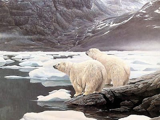 hábitat del oso polar