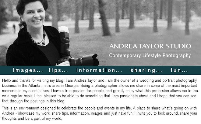 Andrea Taylor Studio