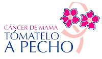 Apoyo la lucha contra el cáncer de mama